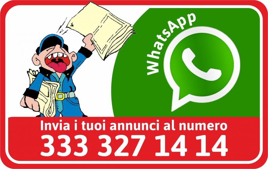WHATSAPP NEW